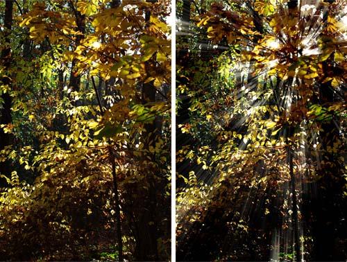 Crear rayos de sol en una fotografía